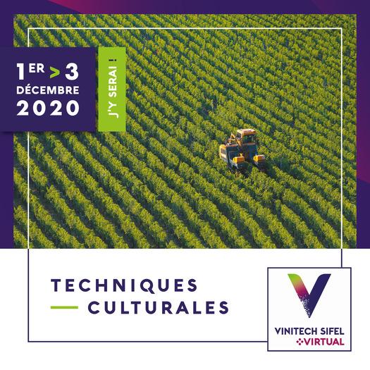 VINITECH Virtual 20